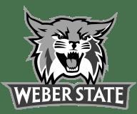 weber state mascot